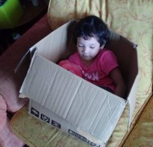 afia kotak